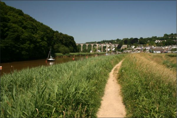 River Tamar at Calstock © Jon Combe