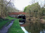 Staffordshire and Worcestershire Canal Walk - Photo Roger Kidd