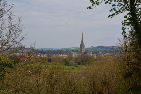 First (or last) view of Salisbury Cathedral - Jonathan Dowe