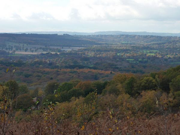 View from Woolbeding Common (Geograph)