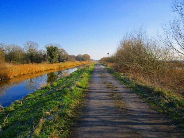 Shapwick Heath - Chris McAuley - Geograph