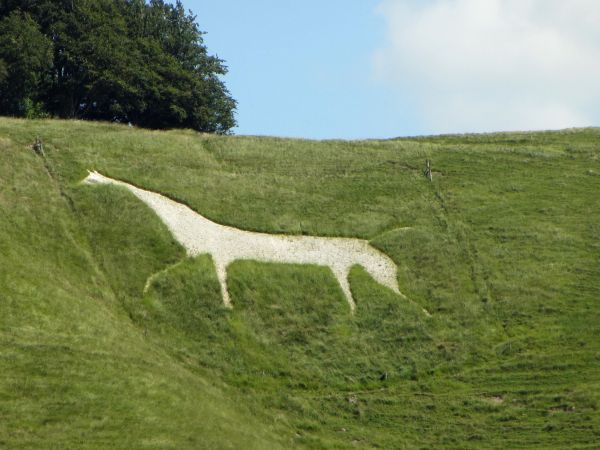 White horse at Cherhill
