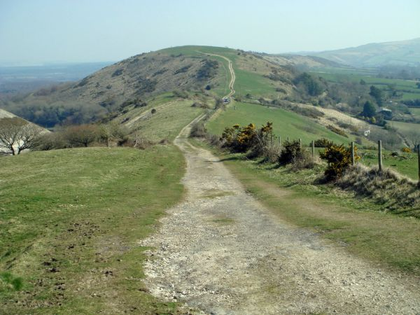 A Purbeck ridge