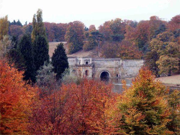 Blenheim Park © Wychwood Project