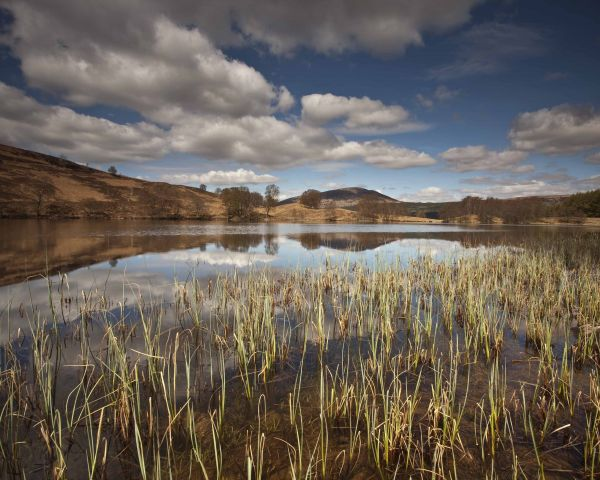 Lochan by Fersit, Glean Spean - By David Langan
