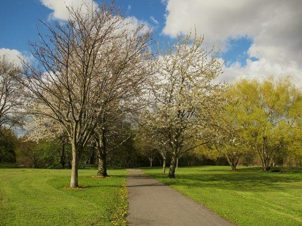 Wortley Recreation Ground © Stephen Craven