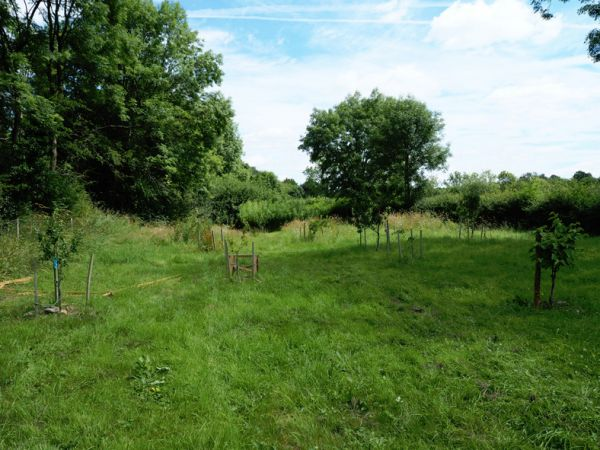 Ecclesbourne Way - Turnditch Orchard