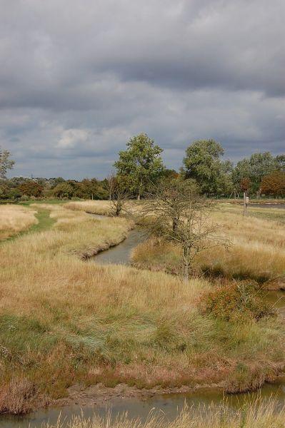 East Tilbury Marshes - John Myers