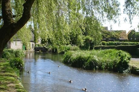 The mill pond, Sutton Poyntz