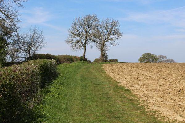 Heading North from Barwick-in-Elmet - Chris Heaton