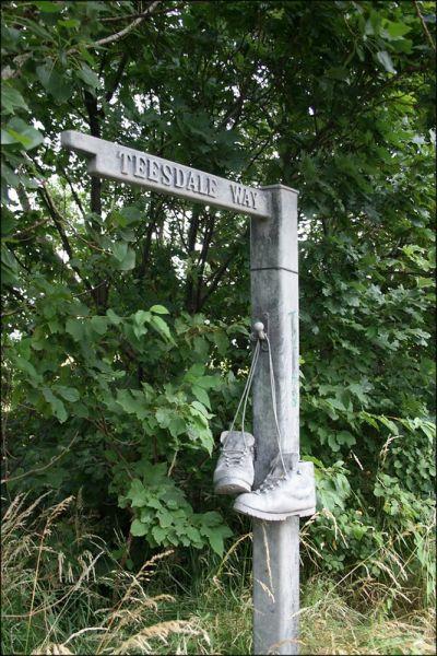 Teesdale Way signpost - Jon Combe