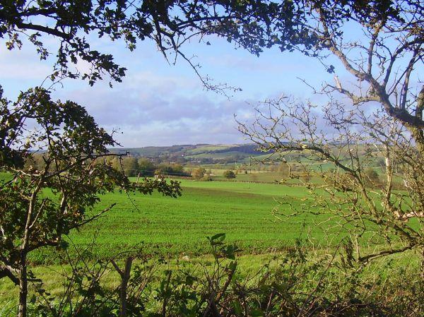 Bluestone Heath Ridge
