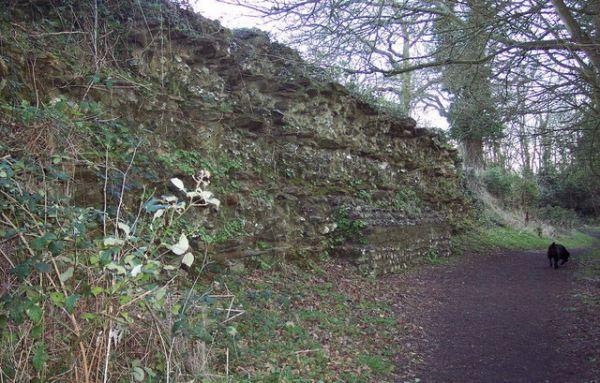 Roman Wall at Calleva, Trish Steel, Geograph