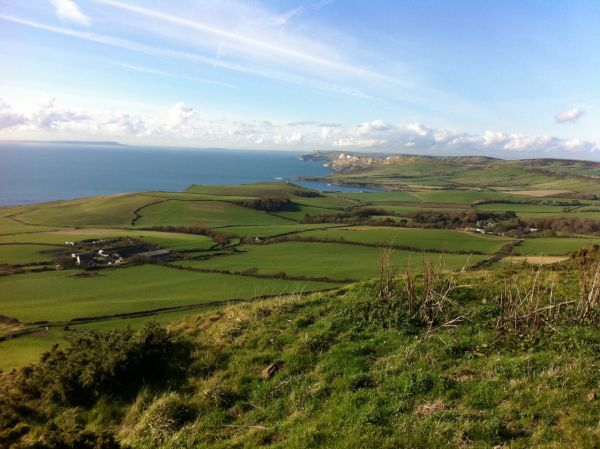 The Dorset coast from Swyre Head
