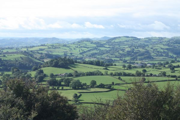 Wales from the hilltop of Moelydd