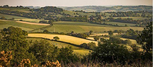 Teignmouth and Dawlish Way © Teignmouth and Dawlish Ramblers