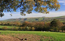 Mynydd Epynt from near Llangammarch