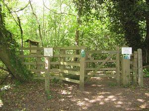 Great Eastern Pingo Trail Start (Visit Norfolk UK)