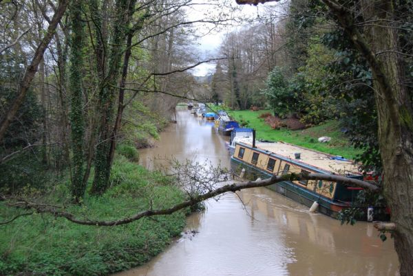 The junction of the Wey Navigation and the Wey & Arun Canal