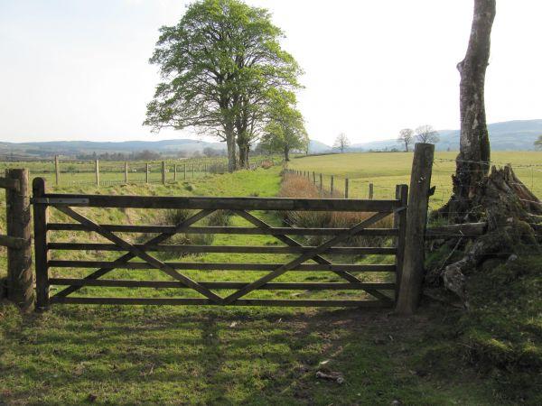 Bridleway between Llangammarch Wells and Llanwrtyd Wells