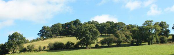 Ecclesbourne Way - Hilltop