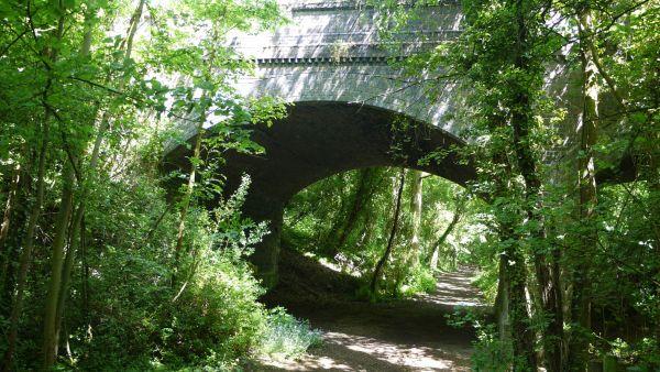 The South Woodham - Maldon Railway bridleway