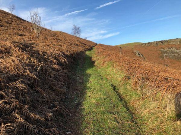 Track to Mynydd y Cymmer north of Trebanog