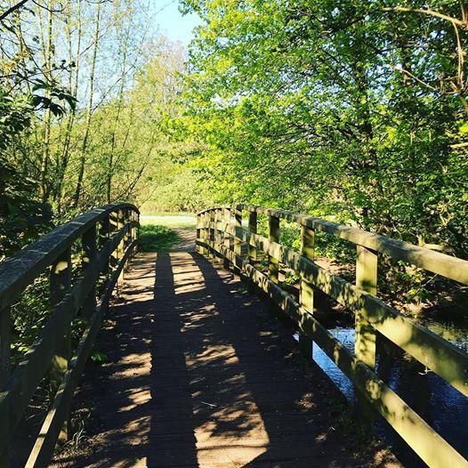 Bridge near Stanborough Lakes