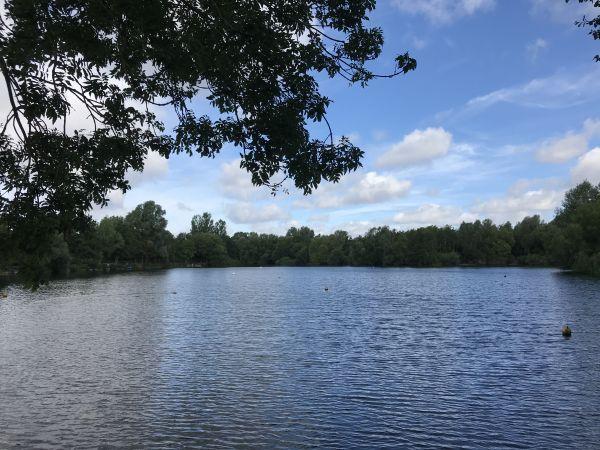 Needham Lake (Derek Magnall)