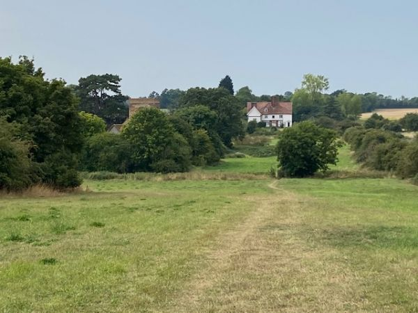 Badley Hall Farm in the distance (Derek Magnall)