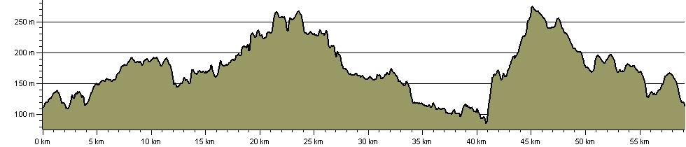 Rezzy Rush - Route Profile