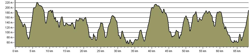 Ashdown Forest Perambulation - Route Profile